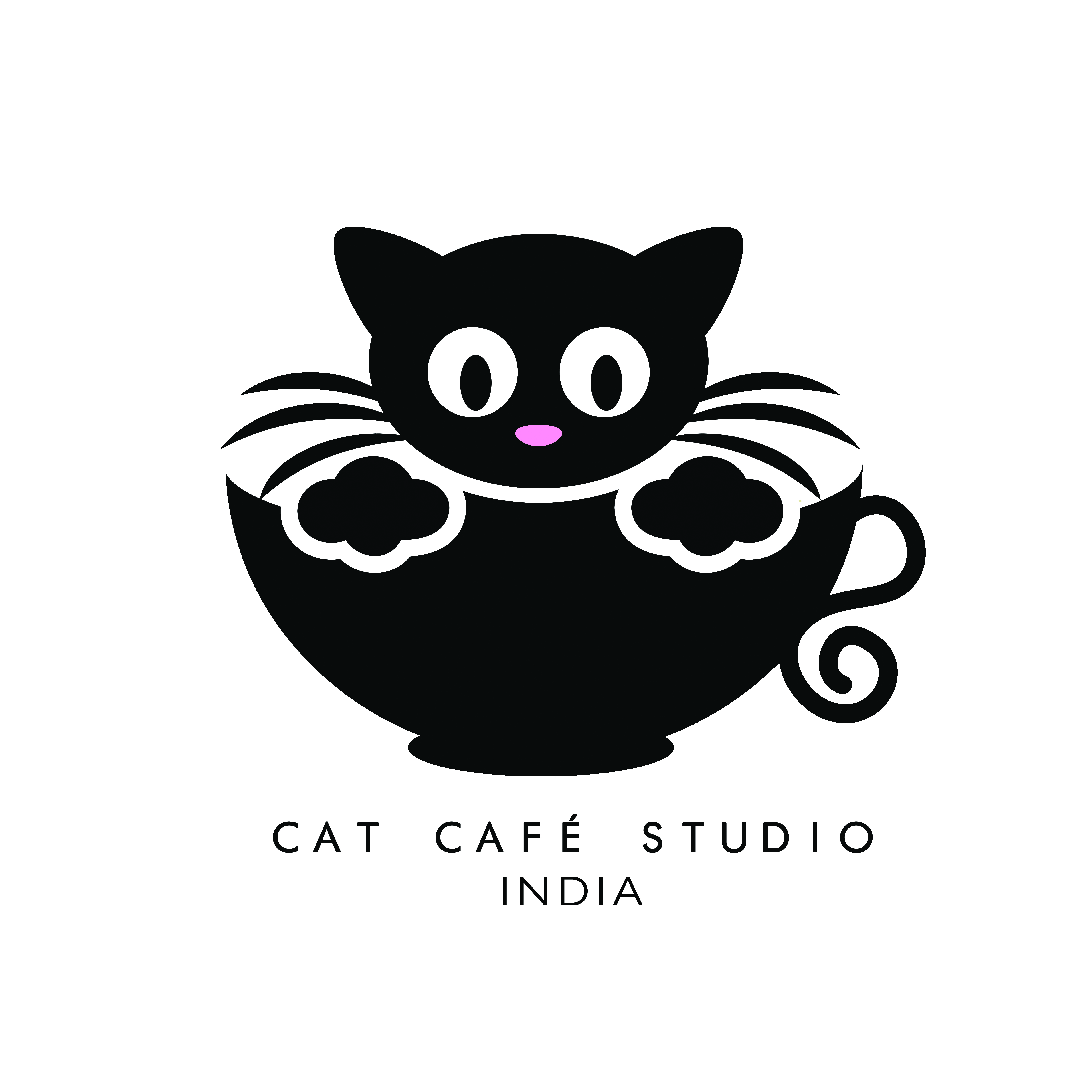 Cat Cafe Studio